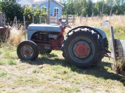 July On the Farm: The Dale Saga Continues