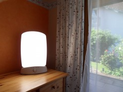 Curing Insomnia, Delayed Sleep Phase Syndrome, and Shift Work Disorder with Natural Light Therapy