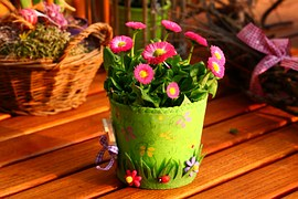 Spring flowers in a colorful container.