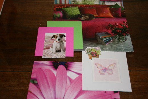 Cute coloured snippets of pets and flowers.