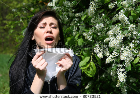 reaction to plants/flowers