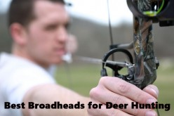 Mechanical or Fixed Blade: The Best Broadheads for Whitetail Deer Hunting