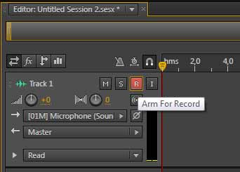Arm the recording and press Shift+Space to start recording