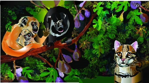 "Finished Howler Monkey pages for ""Olivia Ocelot Comes to the Rescue: Adventures in the Rainforest""."