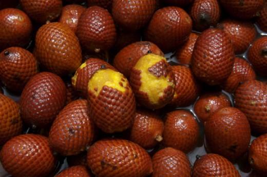 Aguaje Palm Fruit, an upcoming herbal ingredient.
