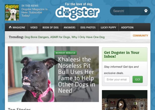 Screenshot of the Dogster website
