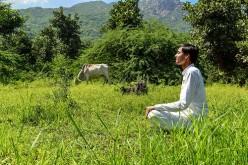 The Many Health Benefits of Meditation