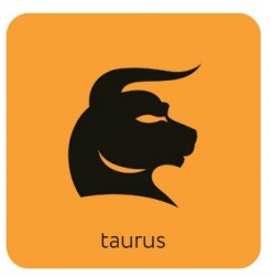 Taurus Leaders: Value Statements