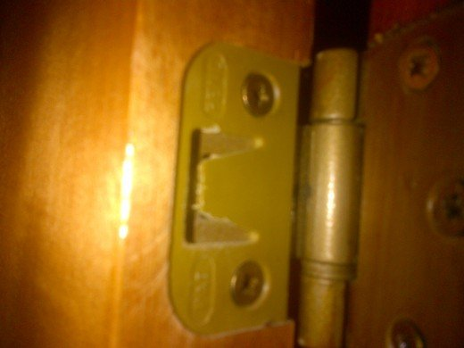 Picture of the hinges