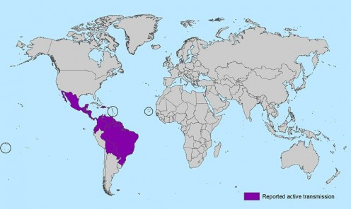 Countries where active transmission of Zika exists.