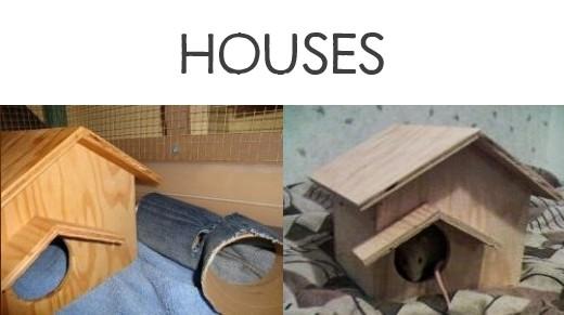 Diy pet mouse house