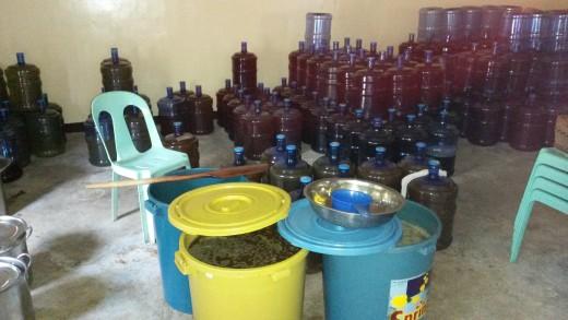 Wine making ala indigenous people of dumalneg