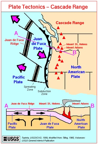 This illustration shows that the Cascadia Subduction Zone is caused by the meeting of the North American plate and the Juan de Fuca plate, 50 miles off the coast of America.