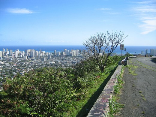 View Honolulu while winding up Tantalus Road.