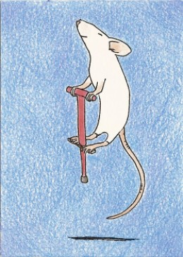 mouse on pogo stick sold for $6.93