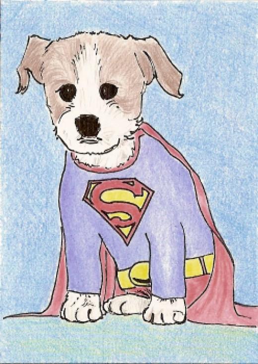 superman puppy  superdog sold for $2.26