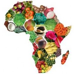 Enjoyable African Cusine