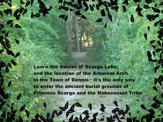 The arboreal arch is the only entryway to the remains of the lost tribe of the Nobscusset.  Photo copyrighted by Bill Russo.