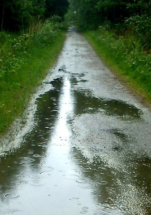 Seen along one's path may be obstacles like puddles full of its own dangers. Steps may become dampened as the spirit too joins. Hope remains perhaps with pen in hand wandering.