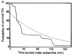 Survival chance when buried in an avalanche