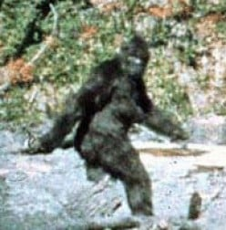 Bigfoot, Sasquatch Is Dead!