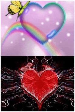 Love vs Love