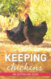 The ultimate guide to keeping chickens in your backyard. This book includes all the information you need to keep your very own chickens: How to choose a breed suited to your needs, space and climate; How to choose and build or buy a coop.