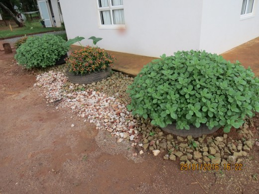 Used Tyres - Ideal for Planting Fkowers