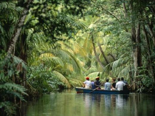 Dominica Ecotourism Tour