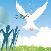 Image talk profile image