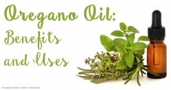 Oregano Oil the Best Kept Secret for Sinus, Colds and Infections