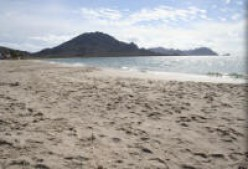 A few Hundred Miles from the US Border, Guaymas and San Carlos have become Popular Destinations