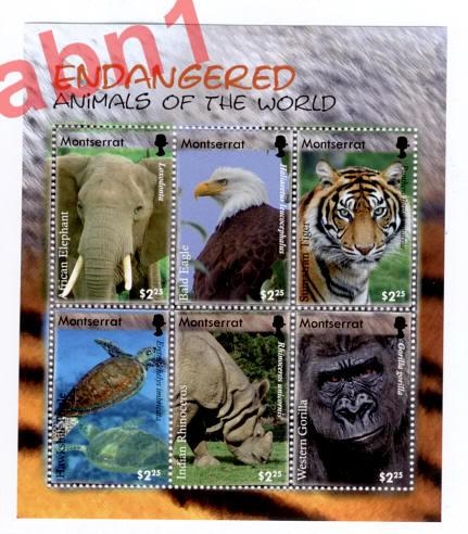 Endangered species around the world.