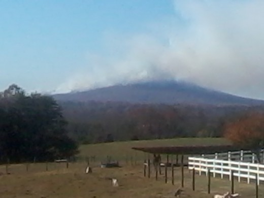 Pilot Mountain controlled burn that got out of control by high winds, burned for several days.