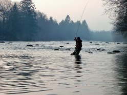 Catch and Release Tips for Fly Fishing