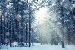 Snow and loneliness in two Robert Frost poems