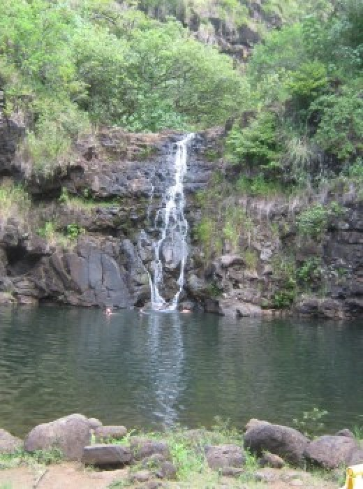 Fall in love with the Waimea Valley Park and Botanical Gardens.