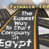 Fathalla-startup profile image