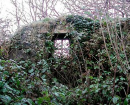 Biddy Early's Cottage Remains