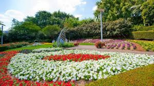 This photo is from the internet, it is a beautiful flower display, believed to be taken in New Farm Park Brisbane. Newfarm Park in Brisbane, is known to some people as the roses garden, but I have not been able to find a good enough photo to show you