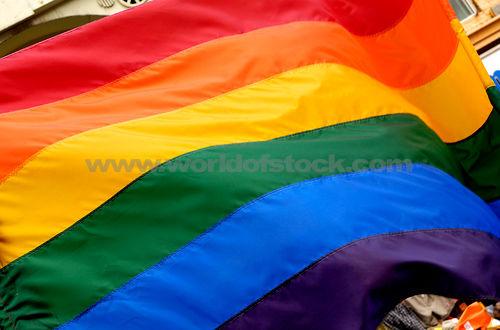 Pride Flag - Long May She Wave