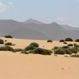 The dunes and distant hills of the northeast