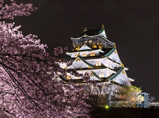 Osaka Castle during cherry blossom season.