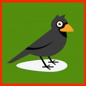 crowesam profile image