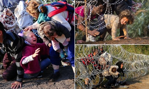 Refugees Crossing Border In Hungary While Girls Hair Gets Tangled In The Barbed Wire.