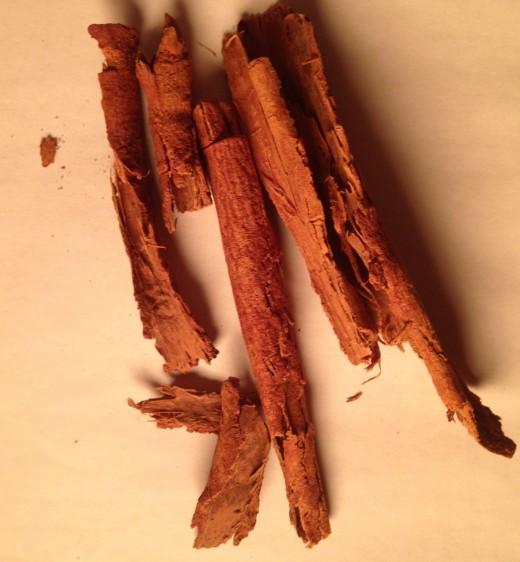 Fresh cinnamon bark