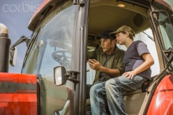 Farmer teching  son to drive  tractor.