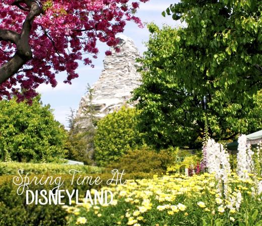 Spring Time At Disneyland.