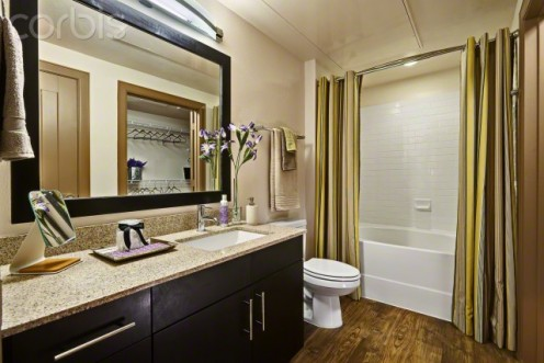 Designer bathroom.