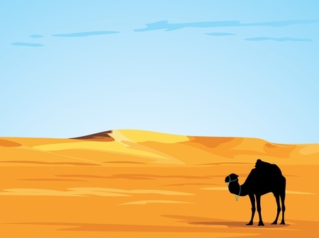 Travel to the Sahara can easily be arranged but not feasible if you are only in Marrakesh for less than a week.